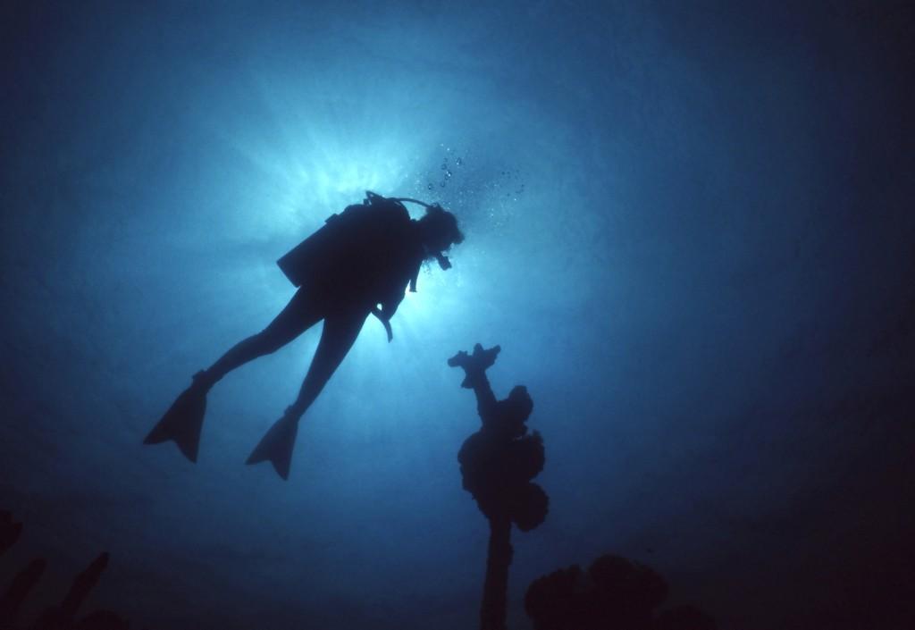 Silhouette of scuba diver