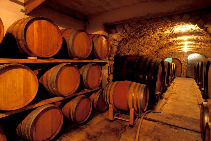 vineyard cellar